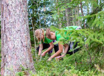 Närmat och skördetider tema på matskolorna i augusti featured image
